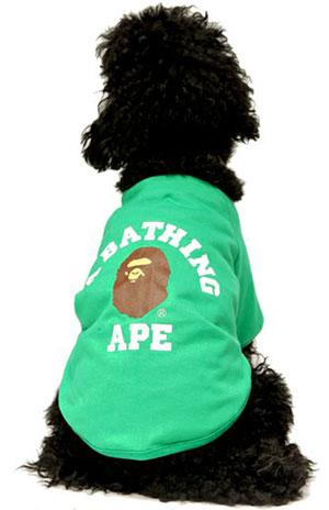 A Bathing Ape Dog Store